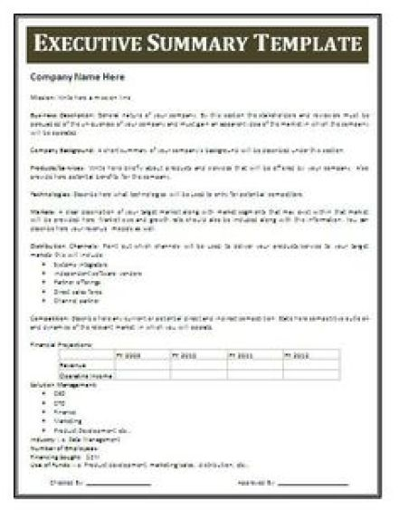 Executive Summary Templates  Excel Pdf Formats