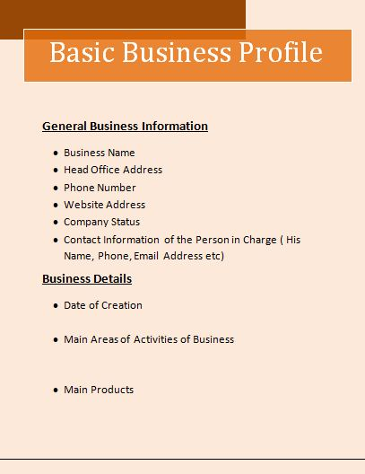 Business Profile Template  Company Business Profile