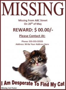 missing pet poster template