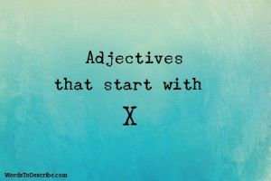 adjectives that begin with x