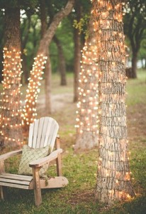 Trees with Romantic Fairy Lights