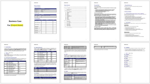 Business case sample plus guide