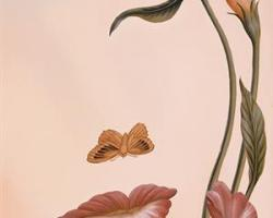 mouth-of-flower.jpg!xlMedium