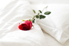 stock-photo-34856250-red-rose