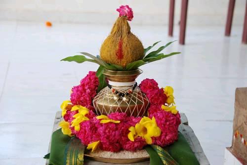 Kalash Coconut