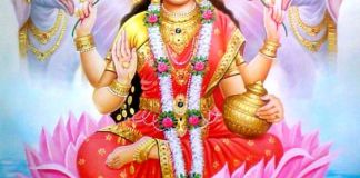 Lakshmi Maa Photos