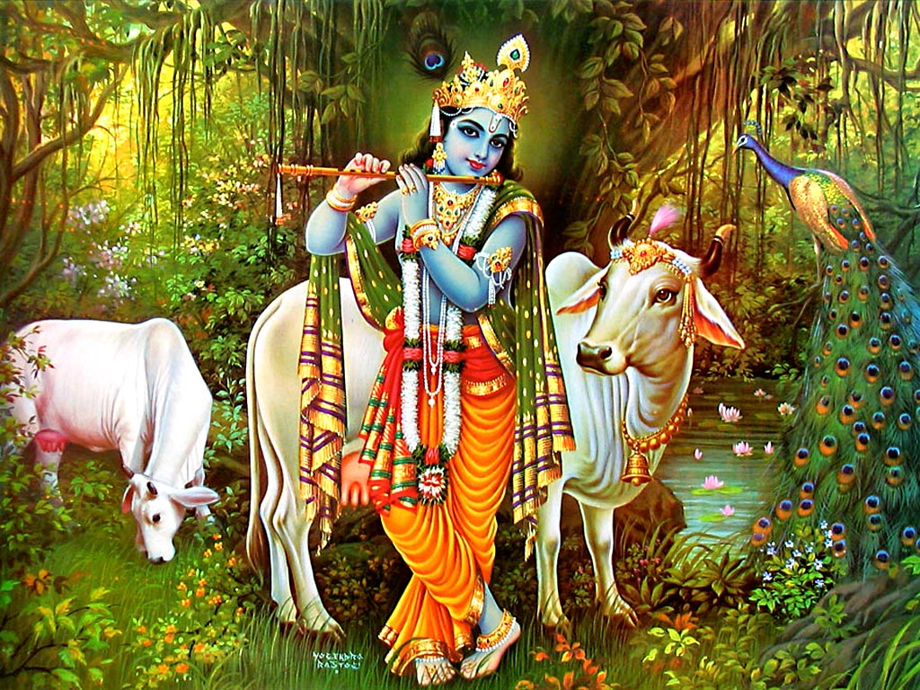 1271_krishna-cow-wallpaper-02