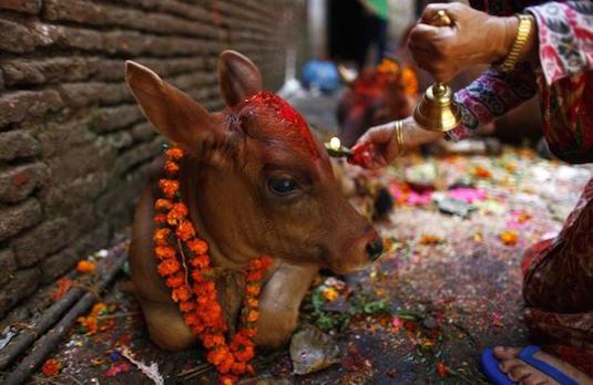 Nepal Diwali Celebrations | How Diwali Is Celebrated Outside India