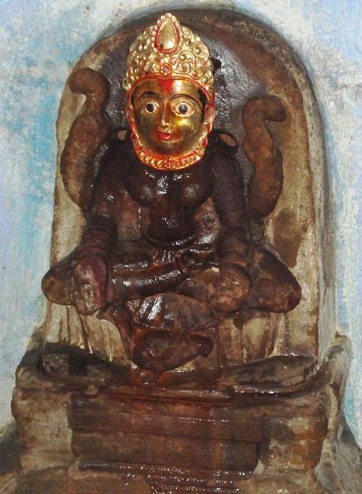 brahmini2