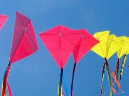makar-sankrati-indian-kites
