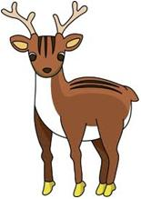 Deer 5 - Stochastic Probability Theory - Pregnant Deer Scenario