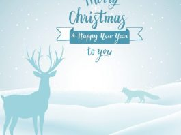 Merry Christmas Images HD – Christmas Wishes, Status, Messages