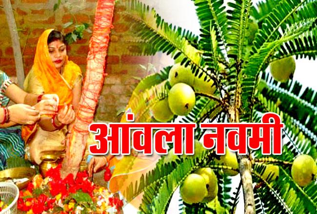 Amla Navami ki Puja Vidhi