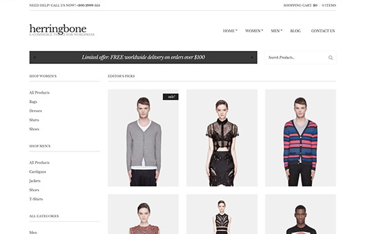 CSS Igniter Herringbone WordPress Theme 1