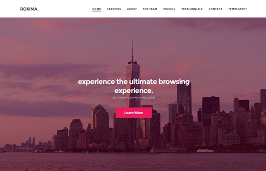 CSS Igniter Roxima WordPress Theme 1