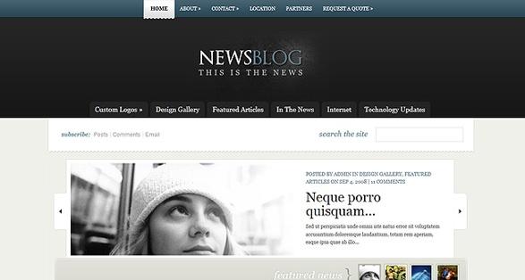 Elegant Themes eNews WordPress Theme