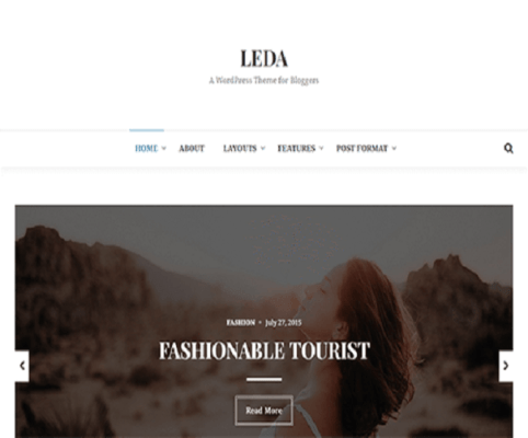 leda wordpress theme