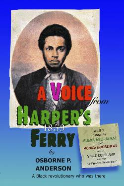 Book Cover: A Voice From Harpers Ferry