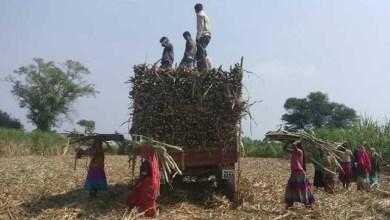 Photo of मुनाफ़े की भूख में महिला मज़दूरों का गर्भाशय तक निकलवाया गया