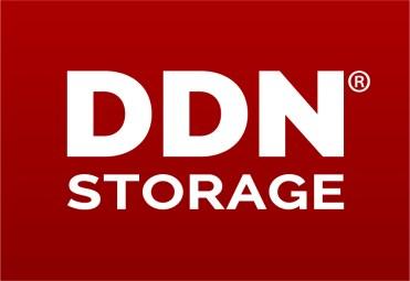 DDN Storage Logo
