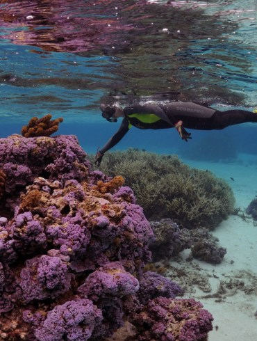 Saving Atlantis (2019) - A researcher studies coral.