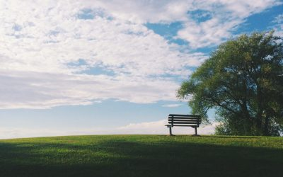 The Ultimate Guide to Funeral Insurance