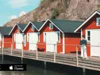 Working Holiday Suecia y Un Nuevo Inicio en Dinamarca