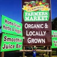 Sunday Funday at the Farmers Market