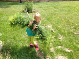 Lots of dill