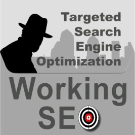 Working Targeted Search Engine Optimization Services