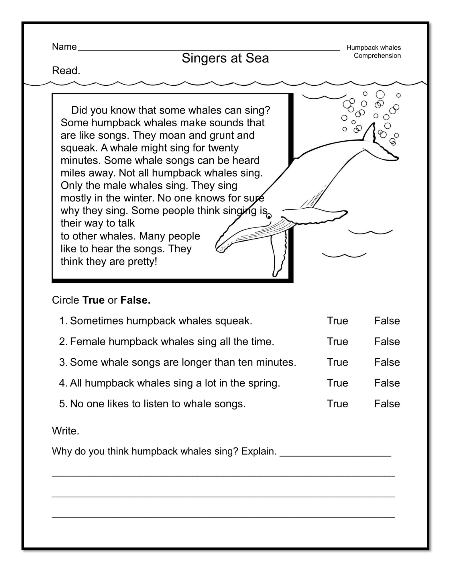 Kindergarten Reading Workbook