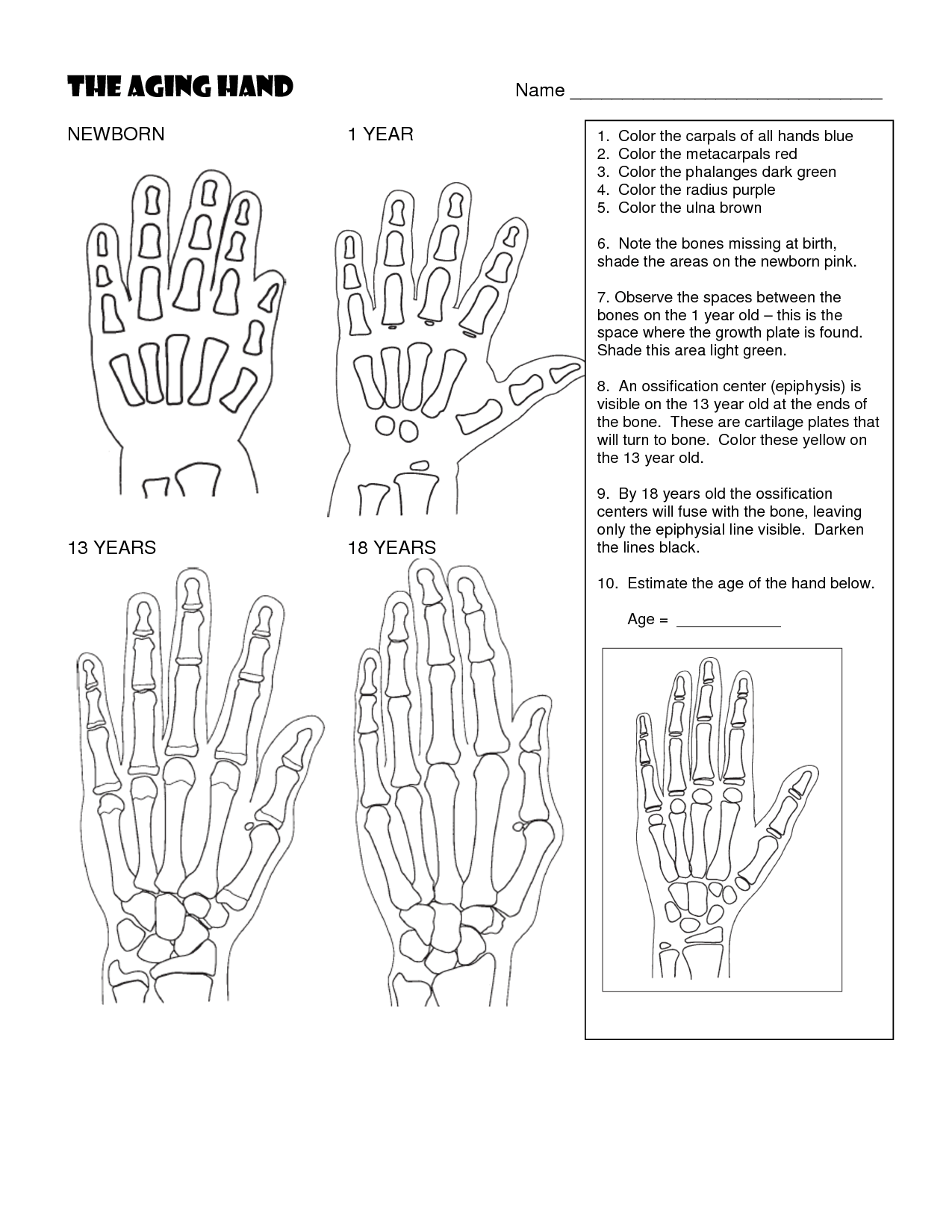 13 Best Images Of Helping Hands Worksheet