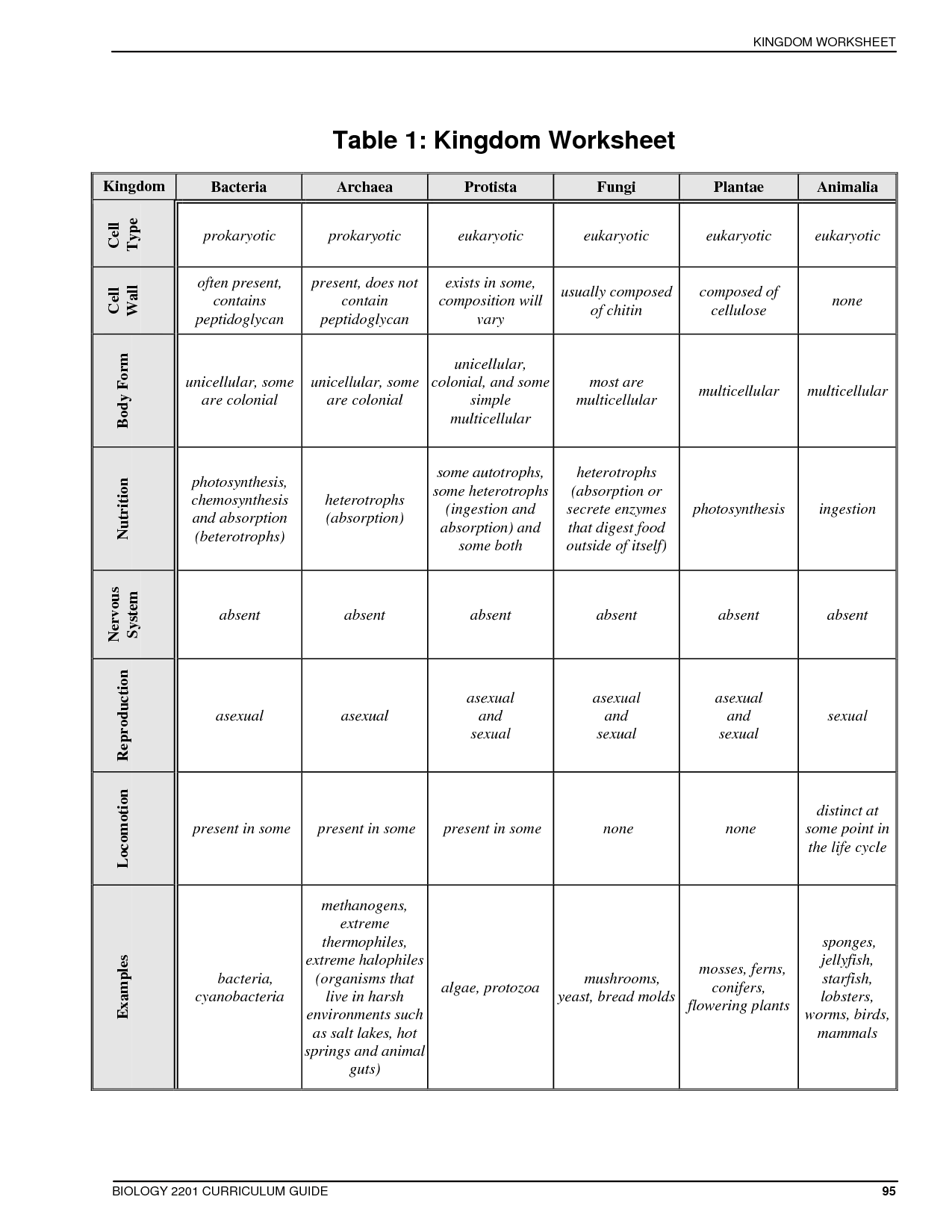 Year 8 Classification Worksheet