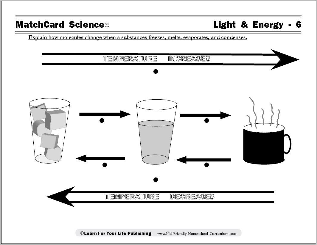 16 Best Images Of Worksheet Energy Foldable