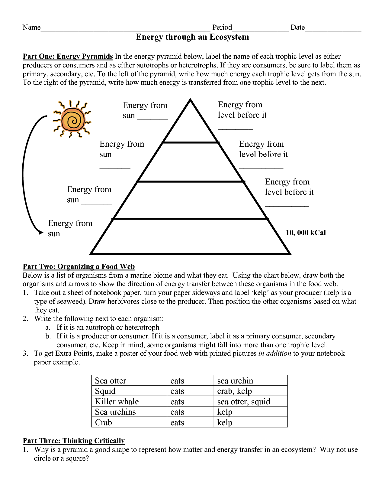 9 Best Images Of Energy Pyramid Trophic Levels Worksheet