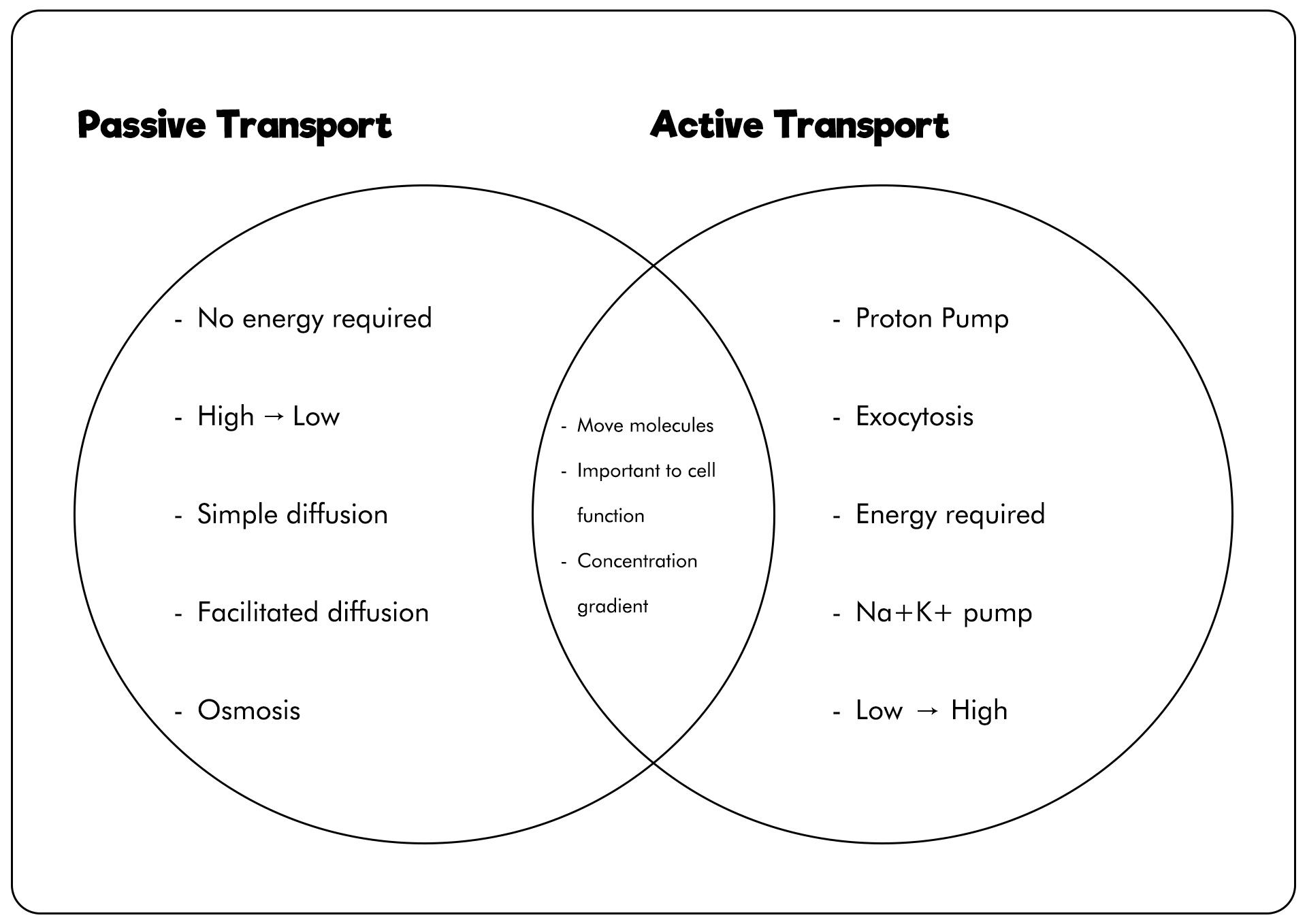 Color Venn Diagram Worksheet