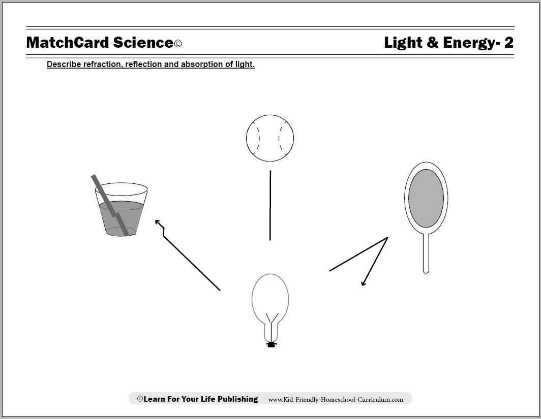 16 Best Images Of Light Absorption Worksheet