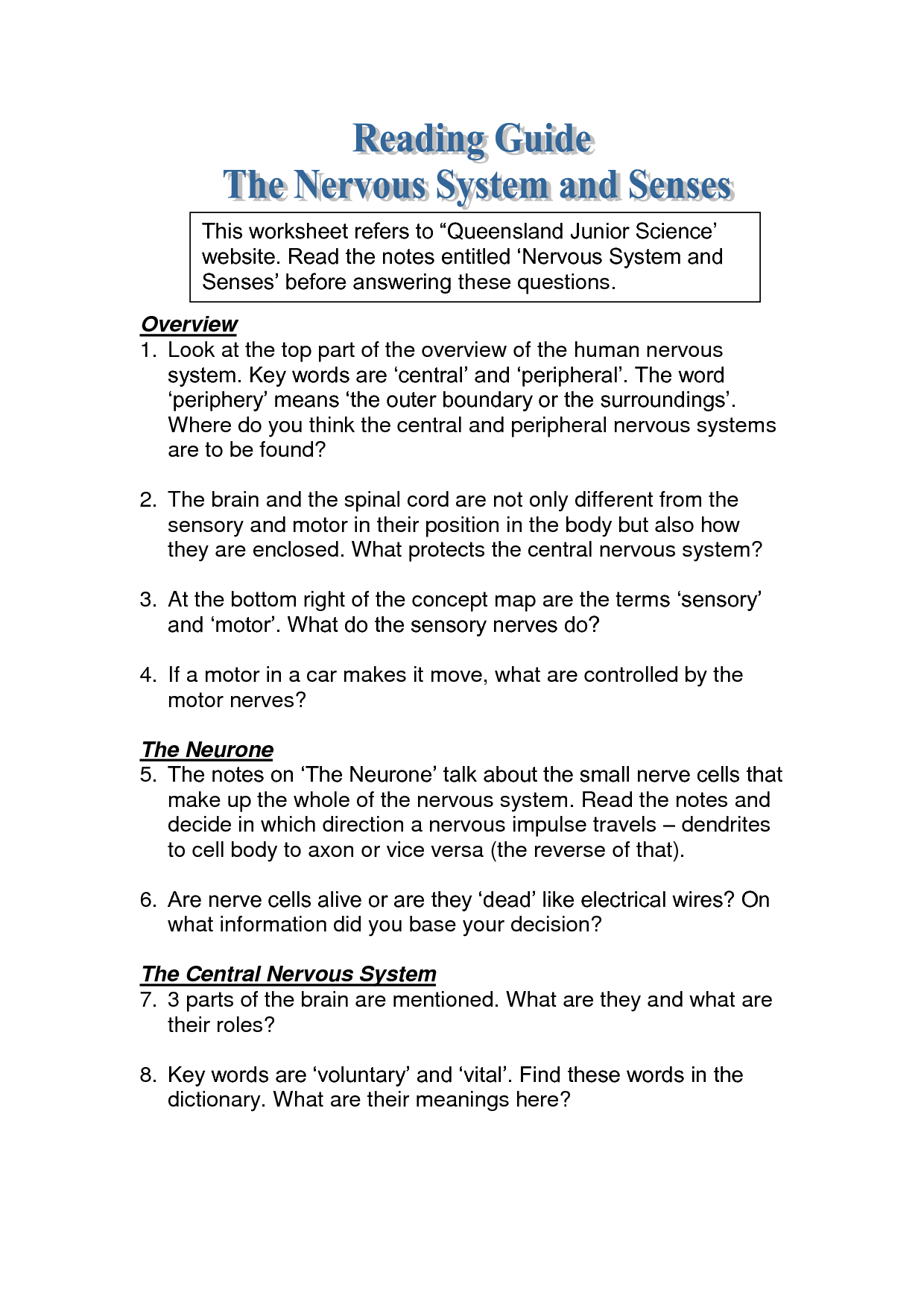 11 Best Images Of Nervous System Worksheet Answers