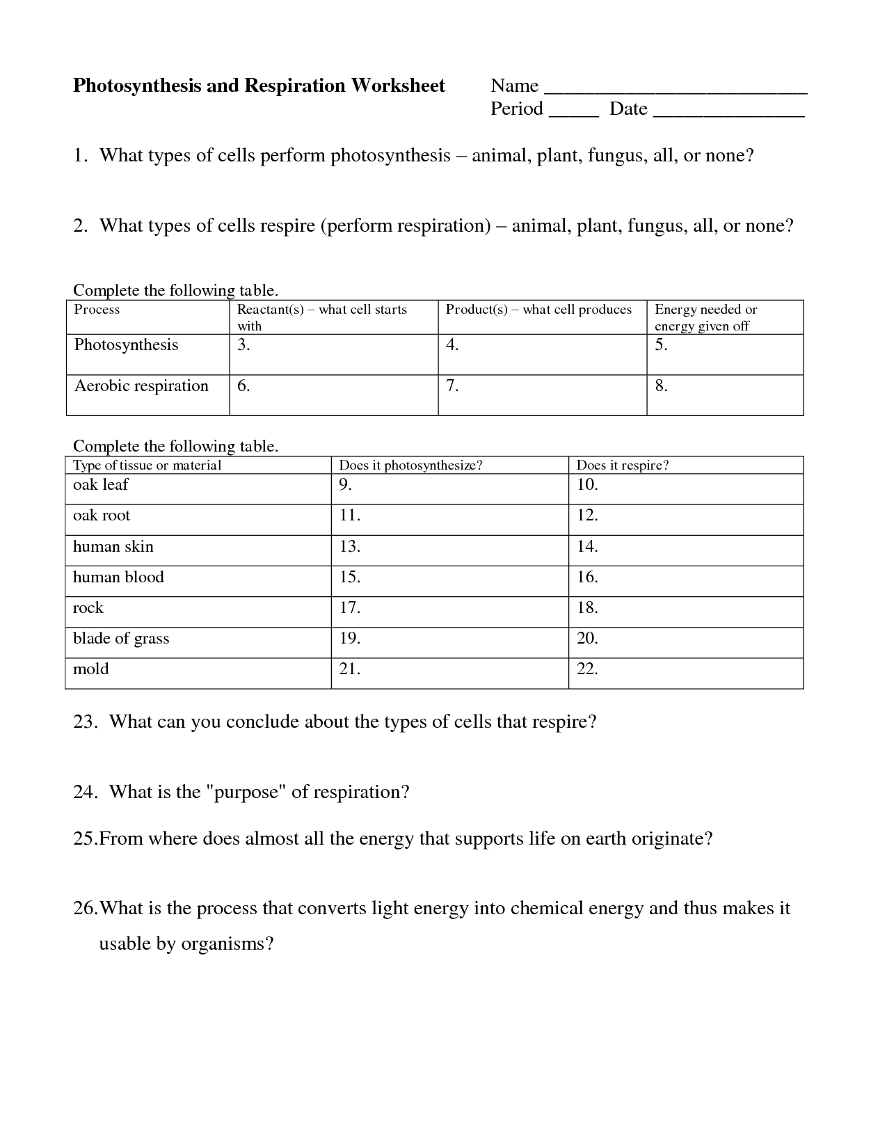 Cellular Worksheet Respiration Answersbiologyif