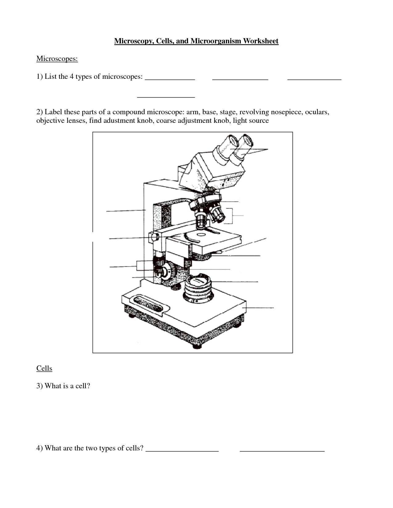 17 Best Images Of Microscope Labeling Worksheet