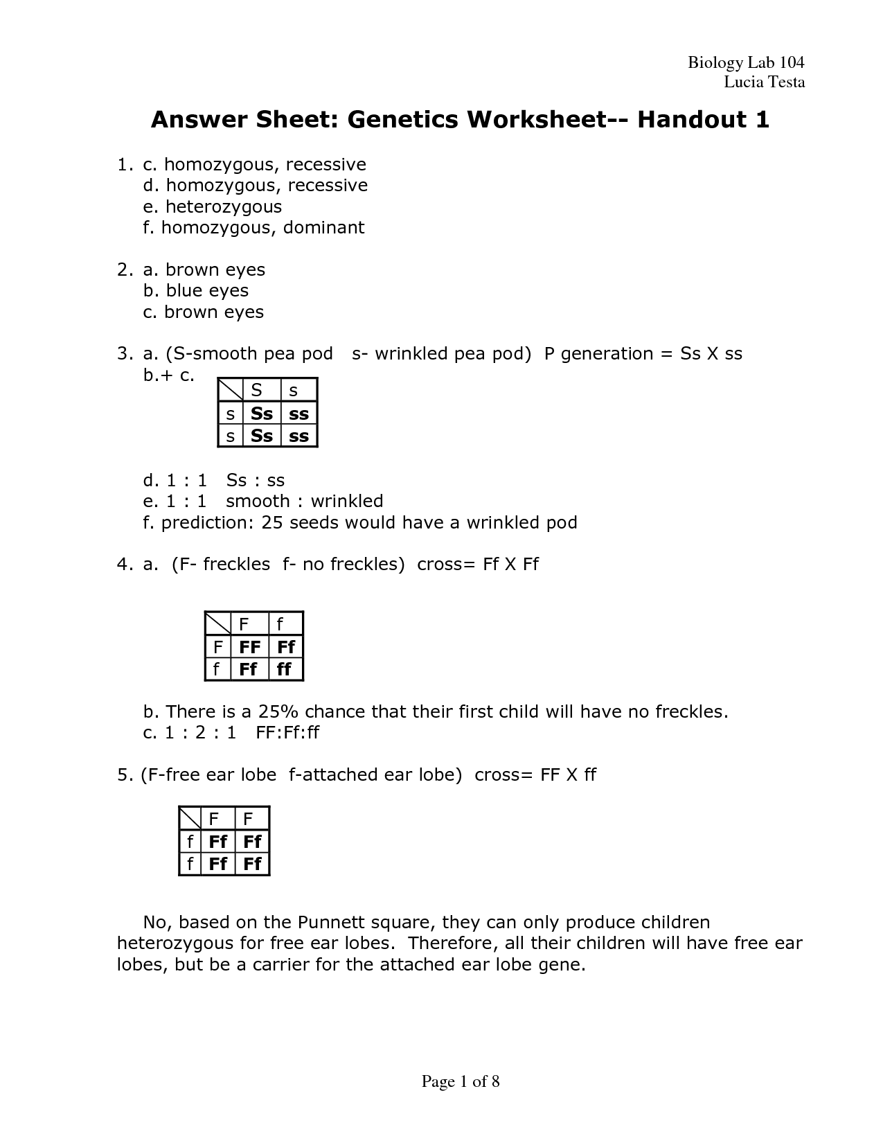 Dna Mutations Practice Worksheet Point Mutation Mutation