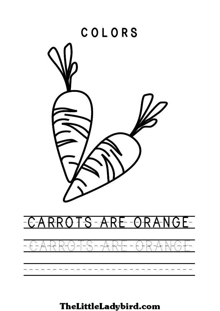 8 Best Images Of Color Orange Worksheet Coloring Orange