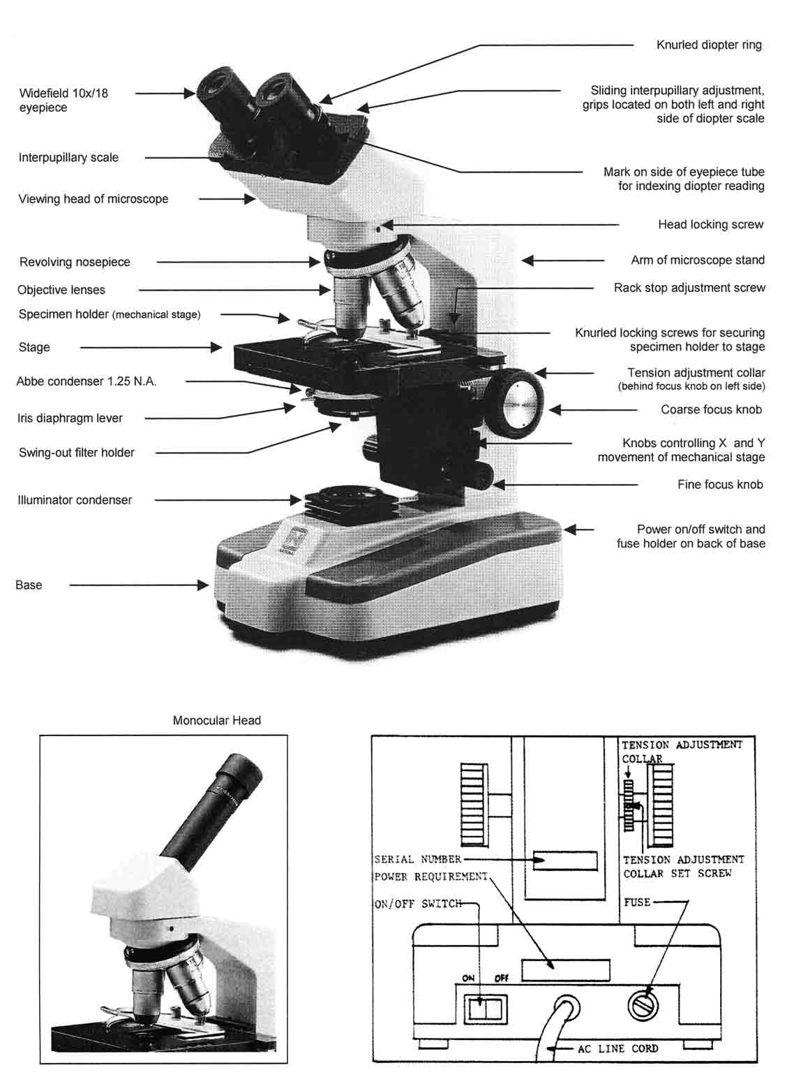 14 Best Images Of Microscope Worksheet Paragraph
