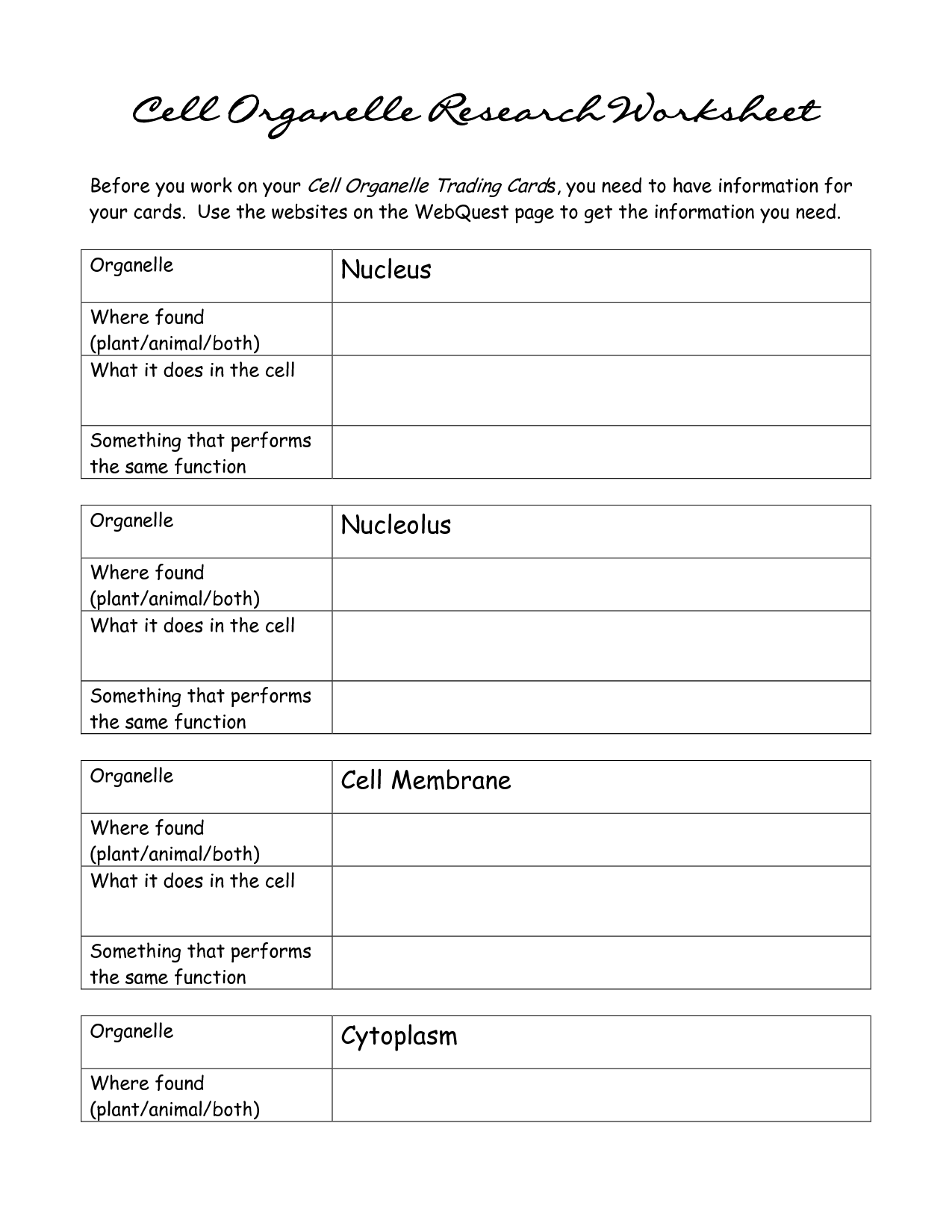 Cell Functions Matching Worksheet
