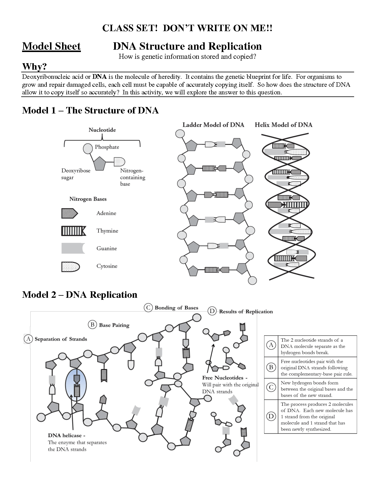 14 Best Images Of High School Dna Structure Worksheet Dna