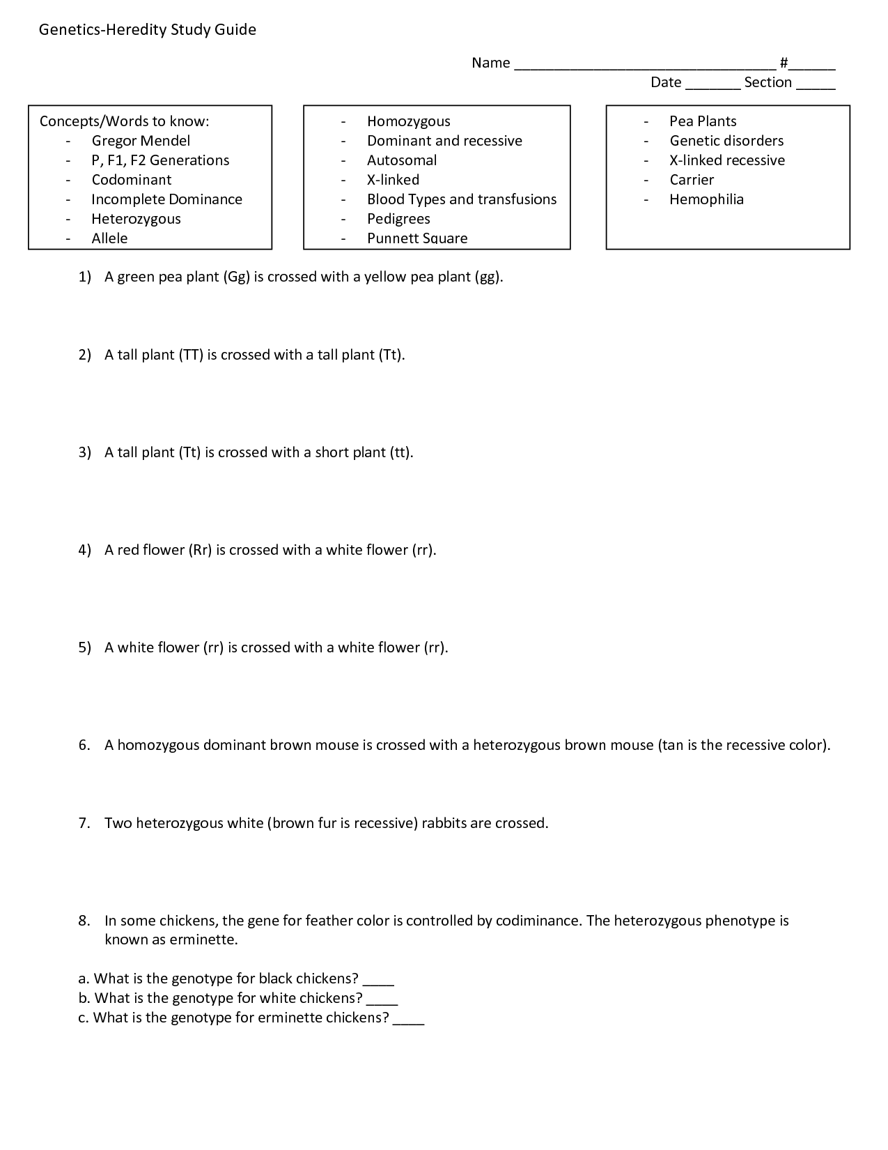 16 Best Images Of Blood Type Worksheet