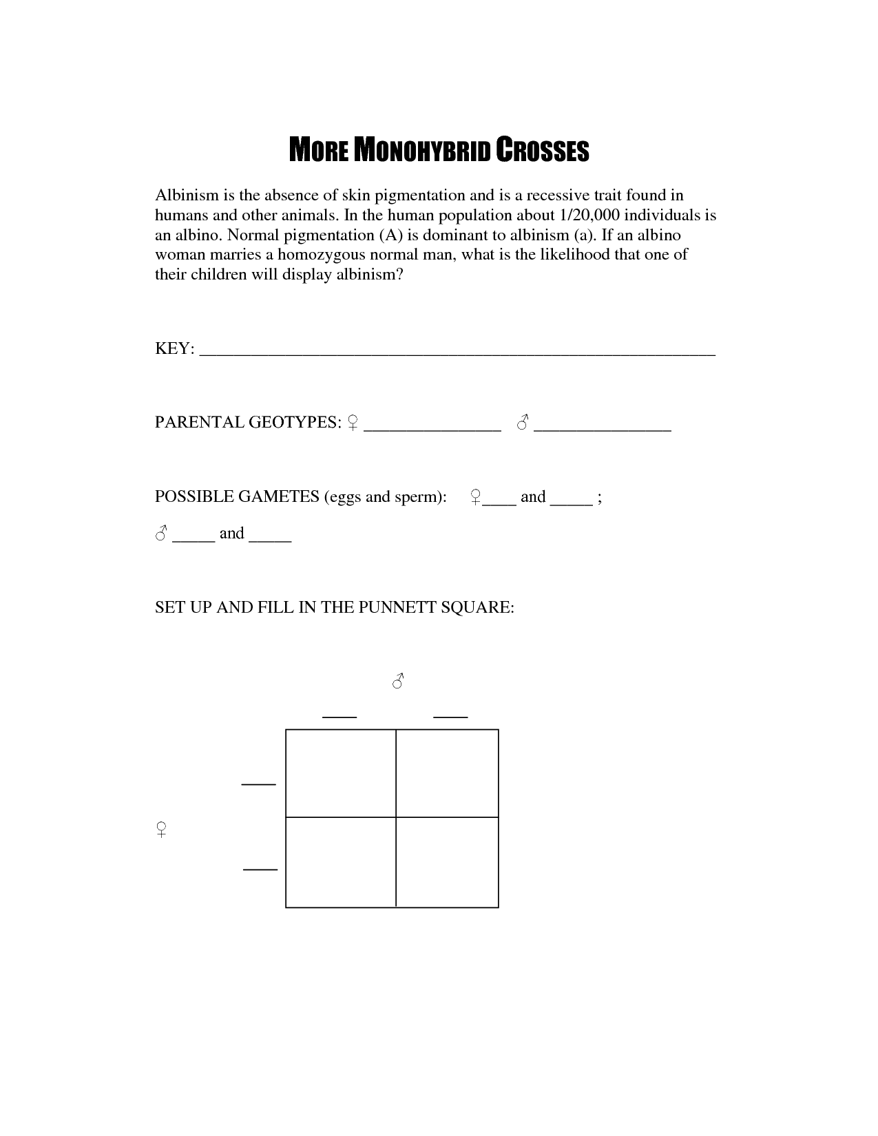 Punnett Square Worksheet With Answers 2