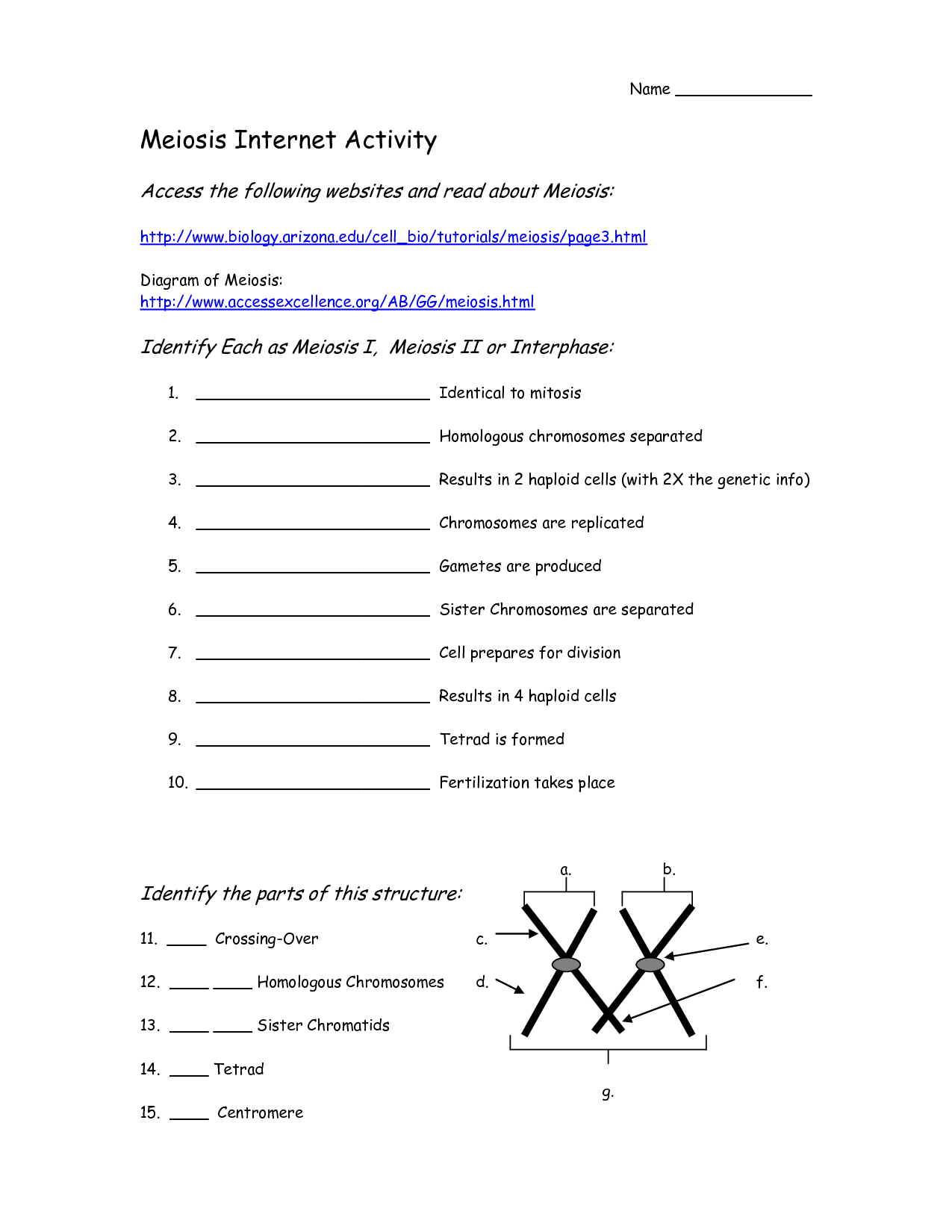 Cell Reproduction Concept Map Worksheet