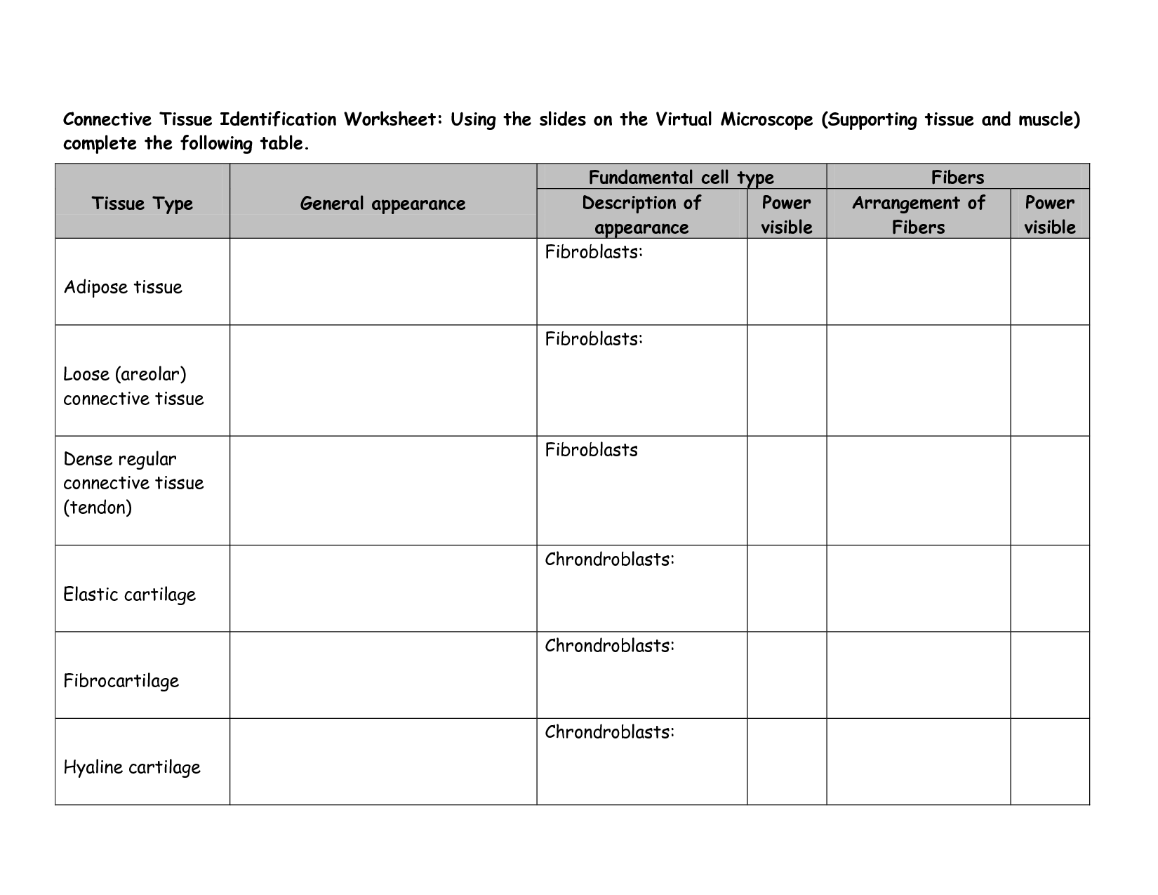 13 Best Images Of Cell Identification Worksheets
