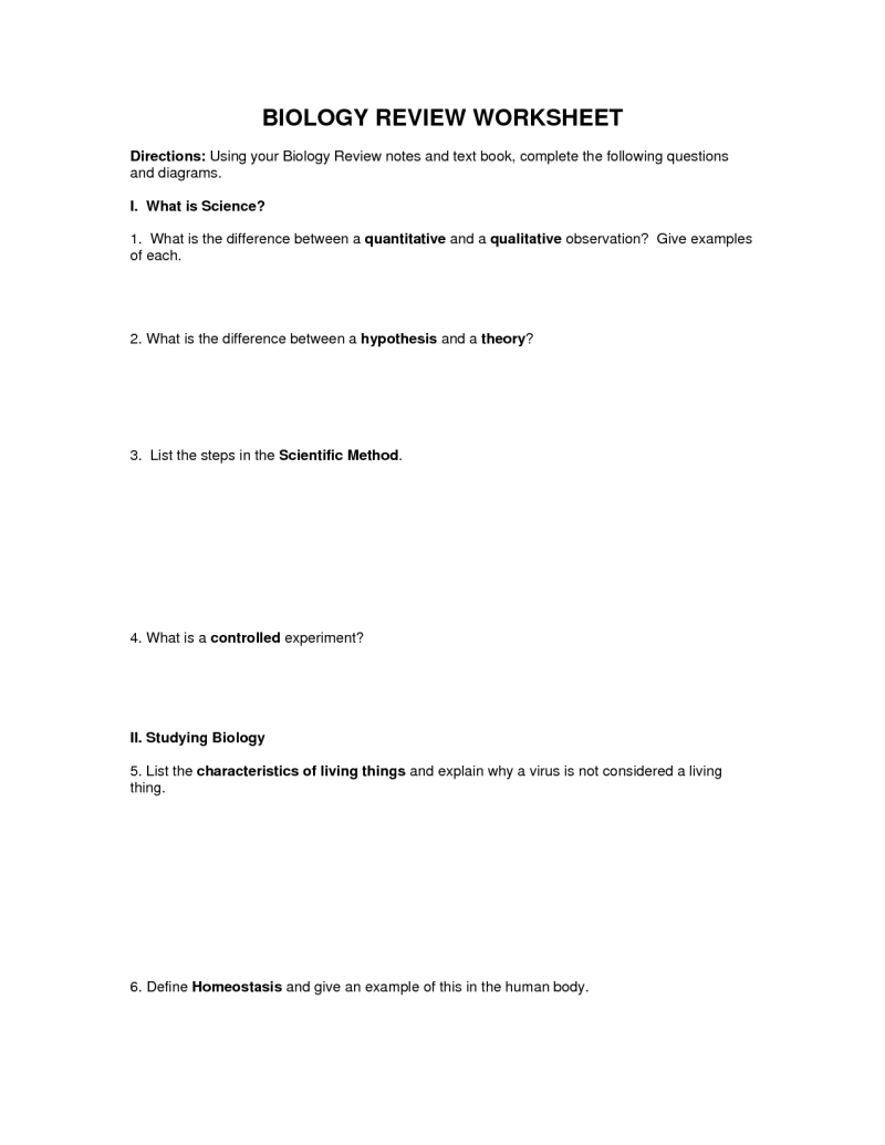 Ecological Pyramid Worksheet Switchconf
